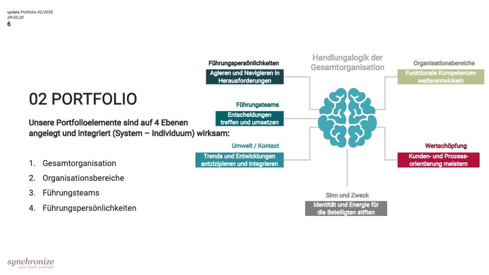 Portfolio Synchronize Consult